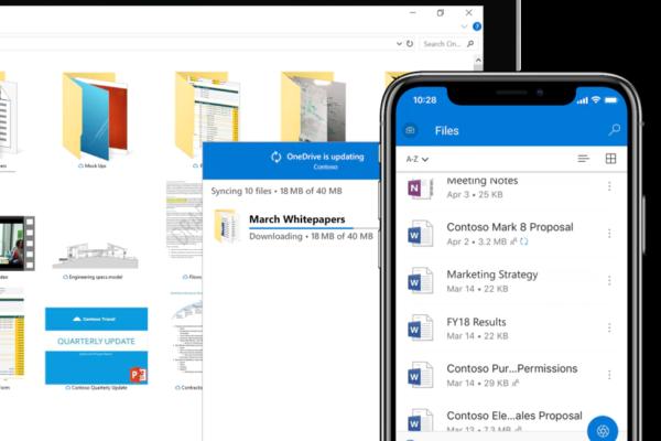 Microsoft OneDrive profesional
